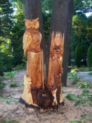 Owl, Raccoon and Squirrel