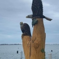 Two Eagles and a Fish on a Stump