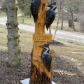 Pileated Woodpeckers Welcome Sign