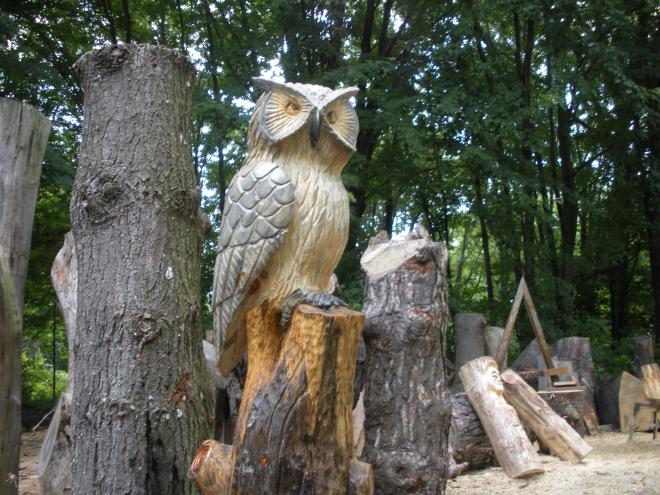 owl-on-a-stump.jpg